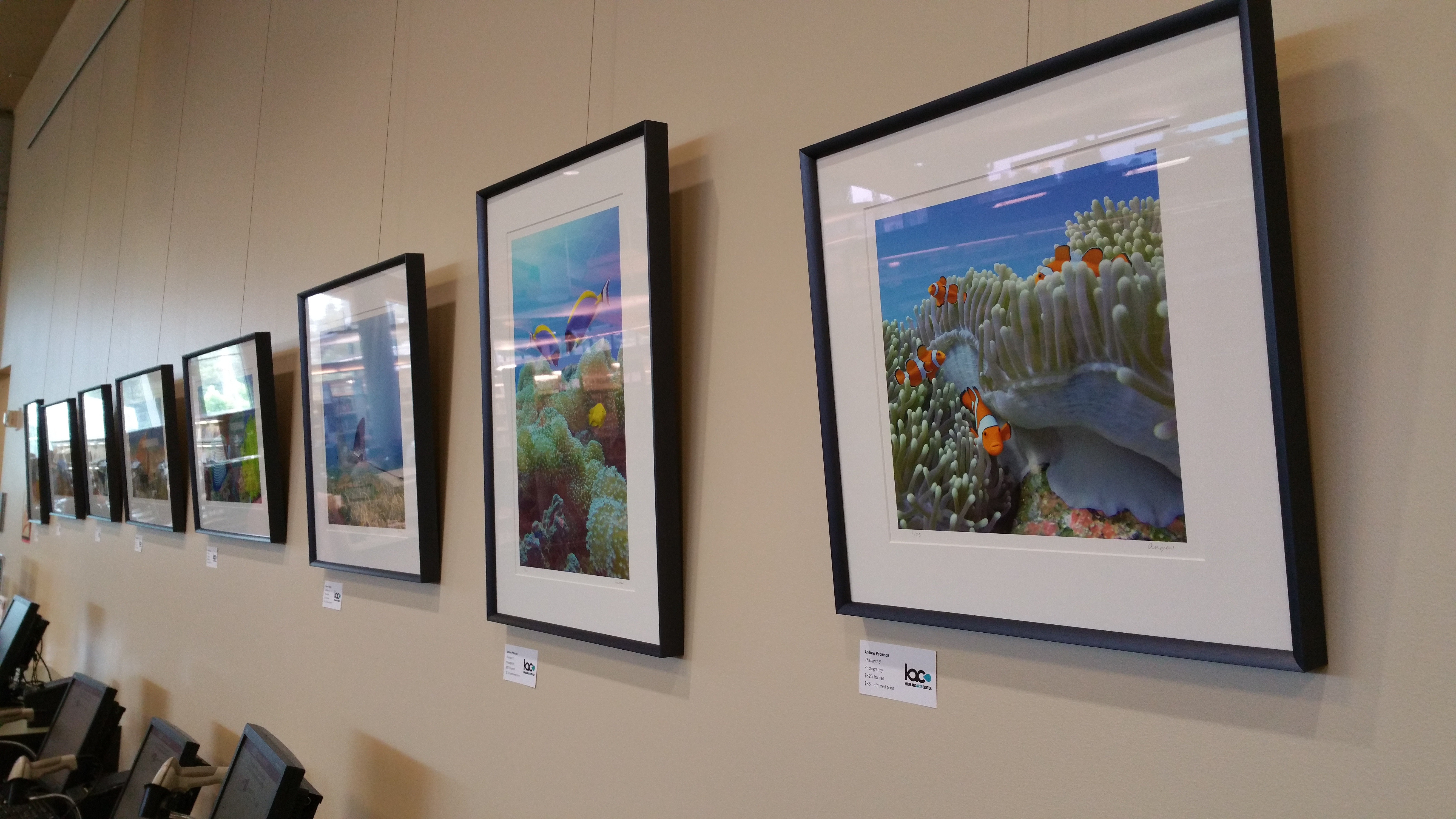 Tropical Underwater Photography of Andrew Pederson at Kirkland Public Library